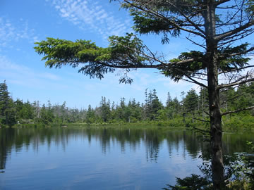 Sargent Mountain Pond